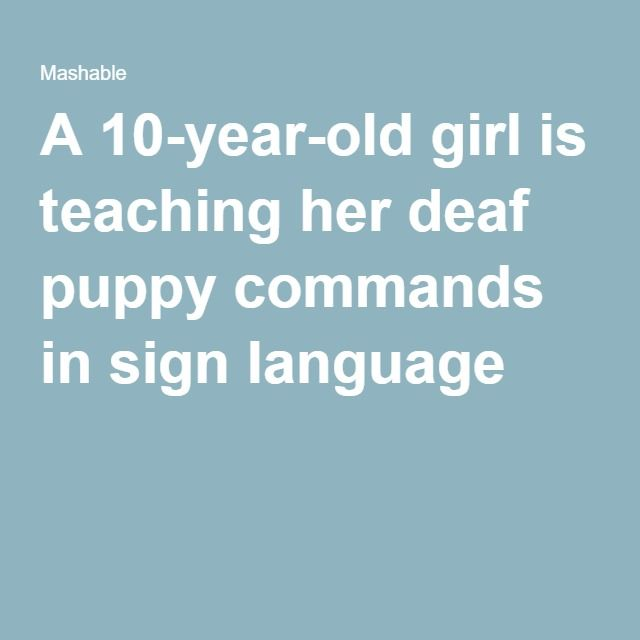 A 10-year-old girl is teaching her deaf puppy commands in sign language