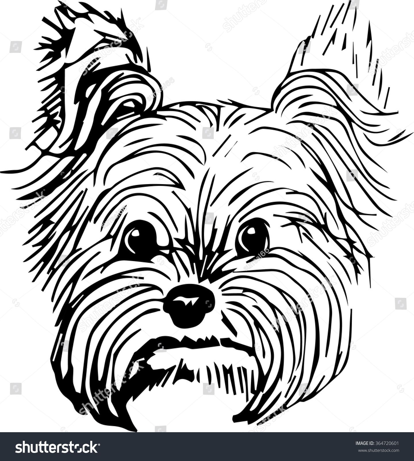 Yorkshire Terrier Dog Hand Drawn Sketch Purebred Small Dog Face On White Background Dog Drawing Dog Sketch Yorkie Dogs [ 1600 x 1440 Pixel ]