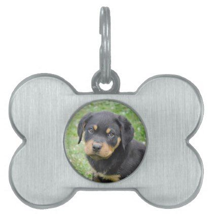 #Doggy McDogface Rottweiler Puppy Pet Name Tag - #rottweiler #puppy #rottweilers #dog #dogs #pet #pets #cute