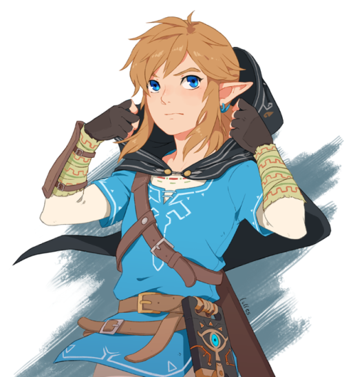 Pin By Xuanˆˆ On Link W Legend Of Zelda Breath