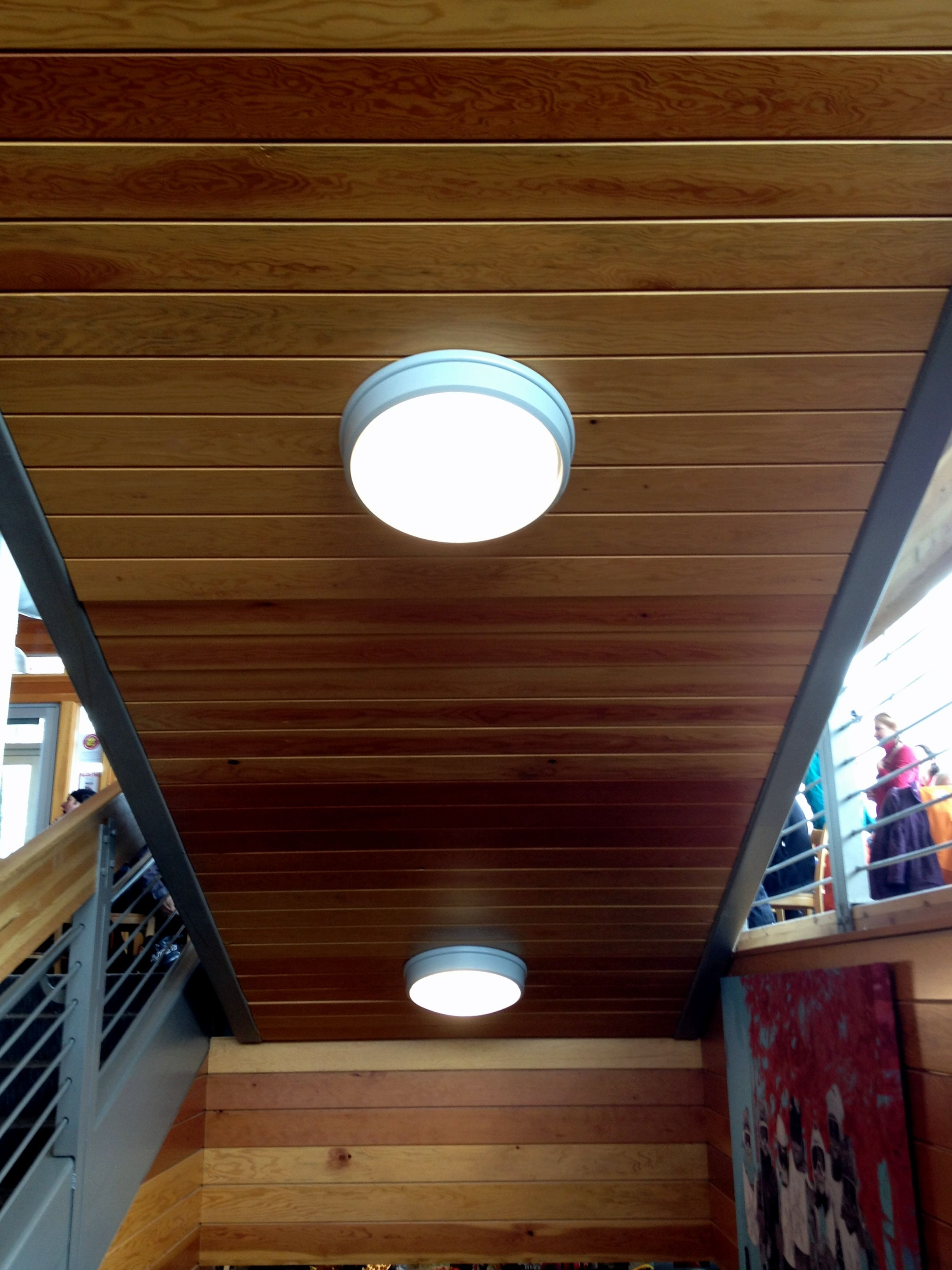 Douglas Fir 1 X 6 Tongue And Groove V Joint Paneling Found At Watson Shelter At Alta Ski Resort Ut Wall Paneling Exterior Wood Ceiling Lights