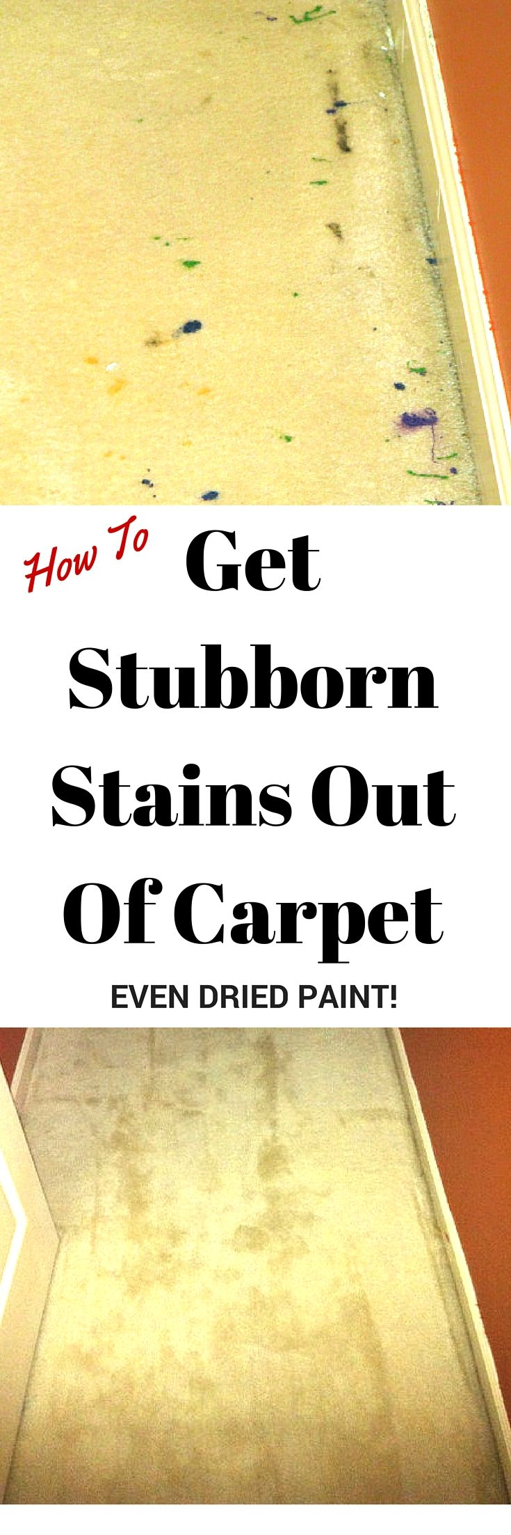 Wow This Really Does Work To Get Dried Paint Out Of Carpet It Also