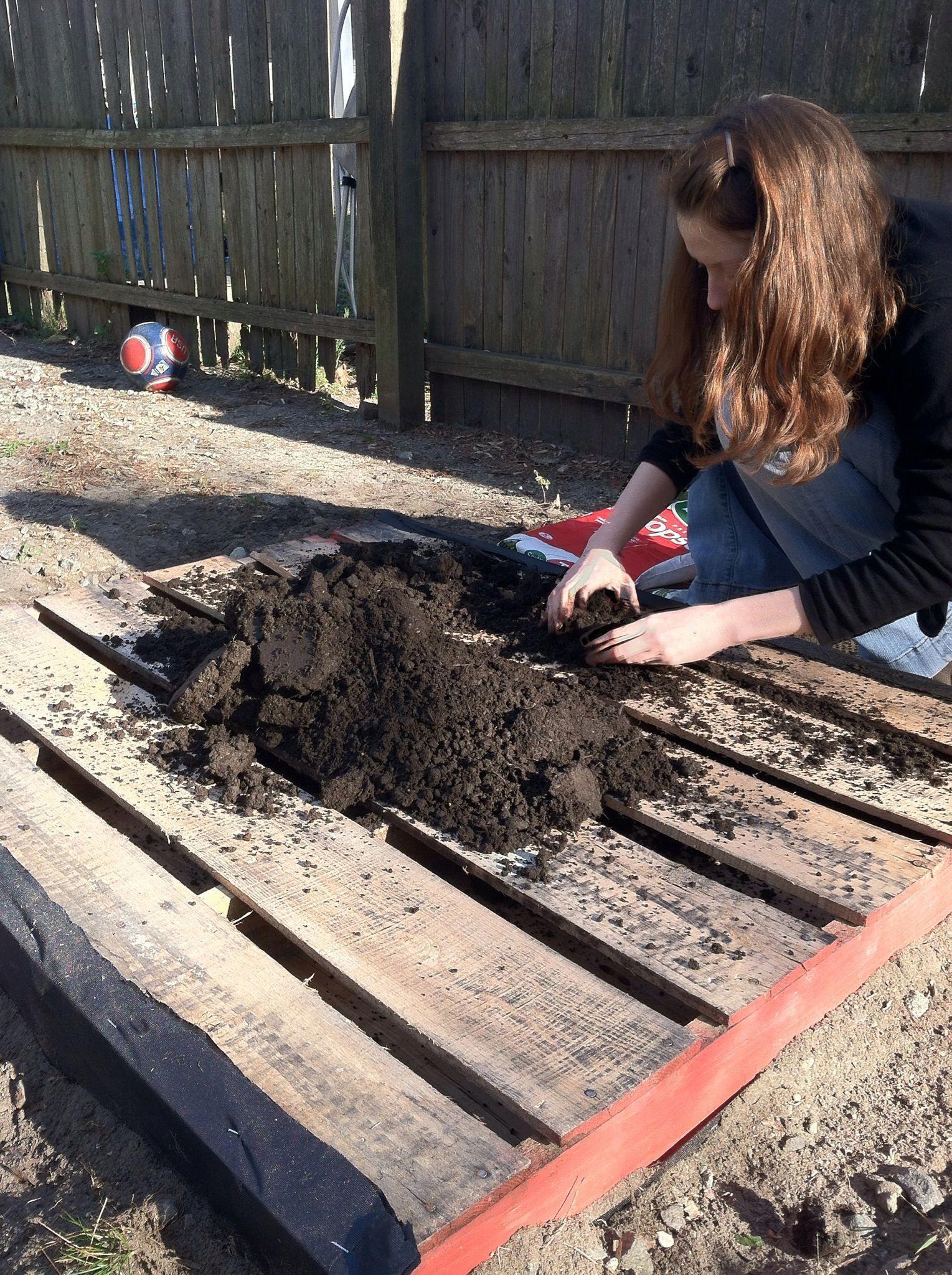 How To Make A Pallet Garden Pallets Garden Pallet Garden Backyard