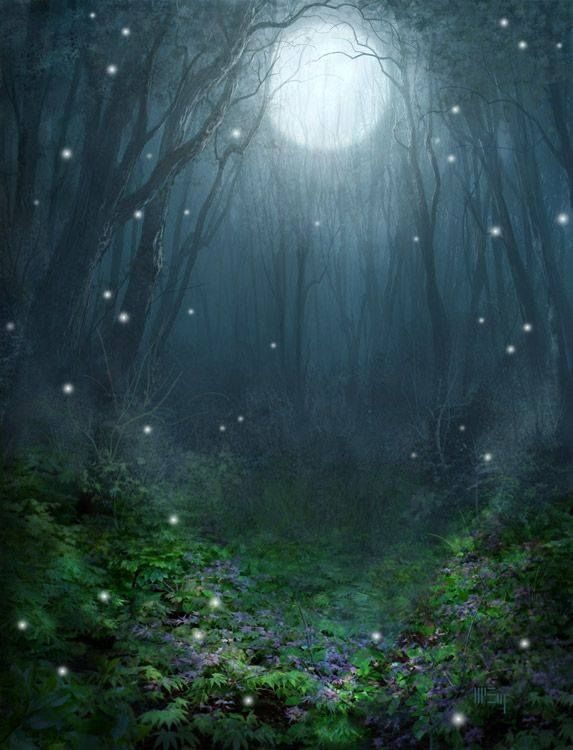 Enchanted Night Fantasy Landscape Magical Forest Scenery