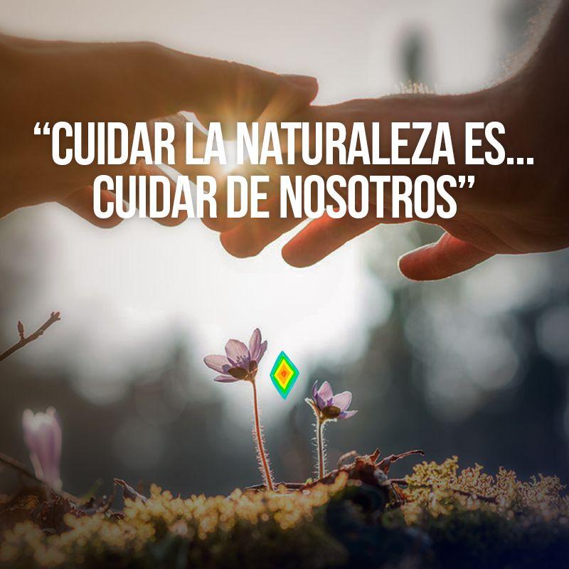 Cuidar De La Naturaleza Escuidar De Nosotros Frases De