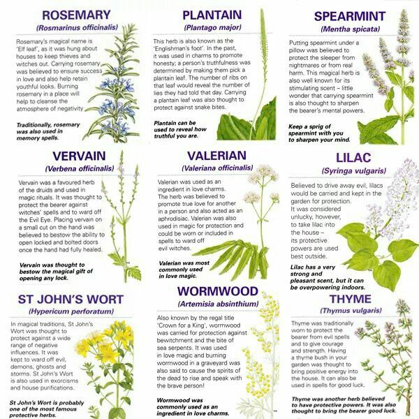 I love how herbs have more than one use or meaning