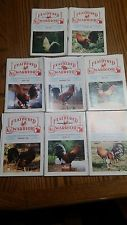 THE FEATHERED WARRIOR 8 lot (1999) Interest of  Game Fowl Fanciers 8 months