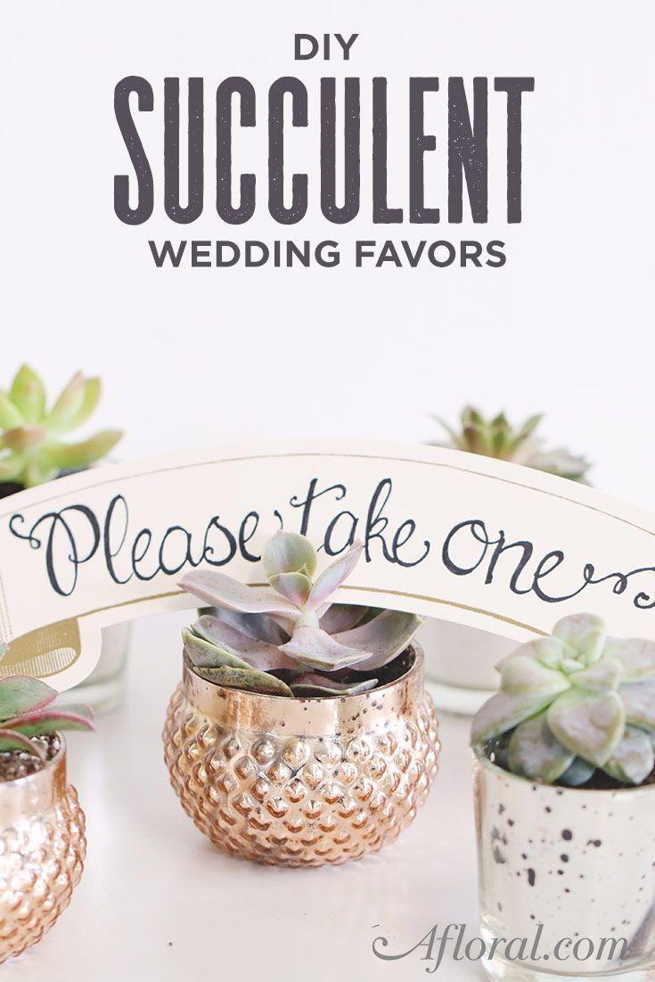 Get The Look: Succulent Wedding Favors | Unique wedding favors ...