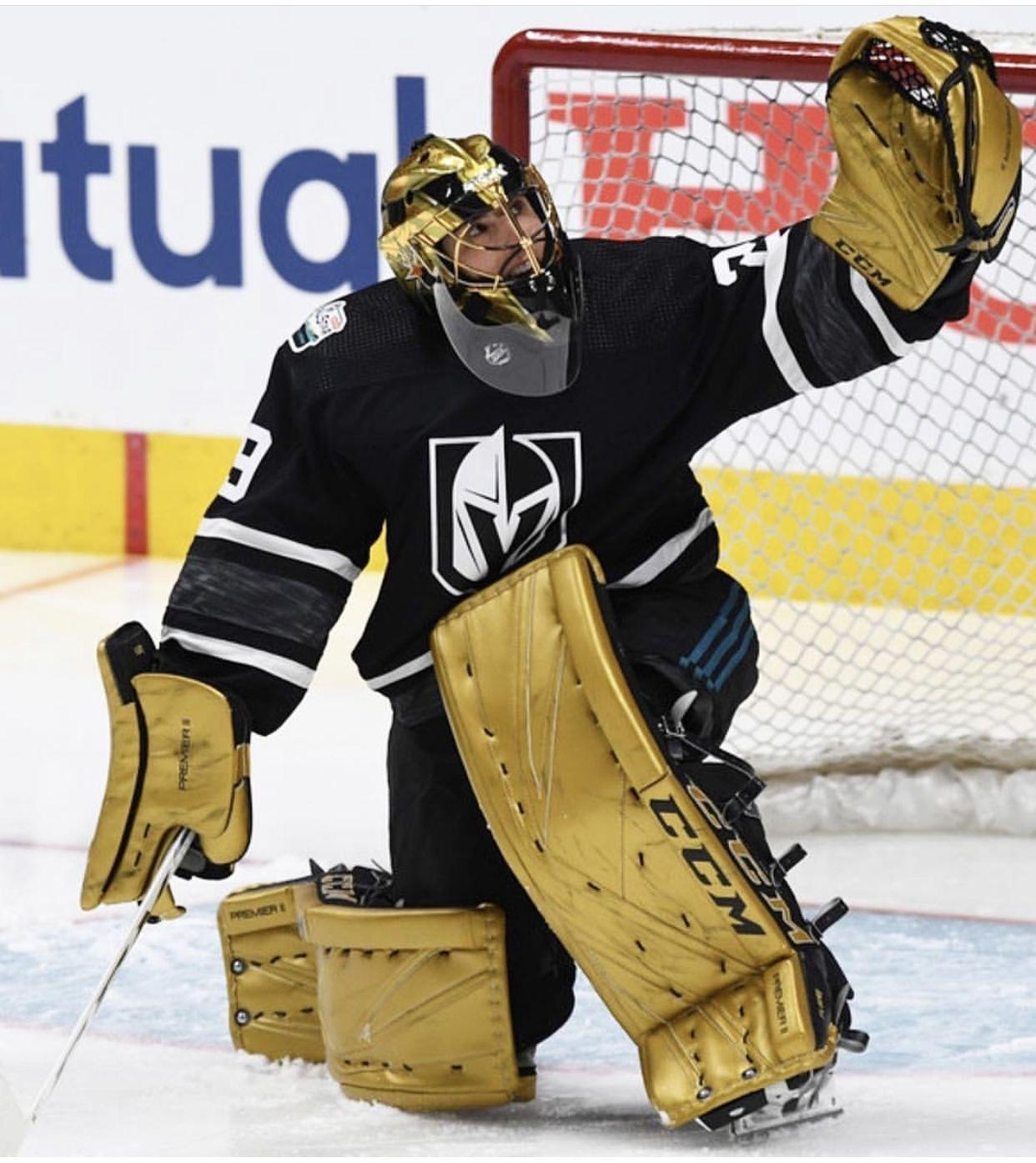 Pin By Scott Johnson On Hockey Hockey Goalie National Hockey League Goalie Pads