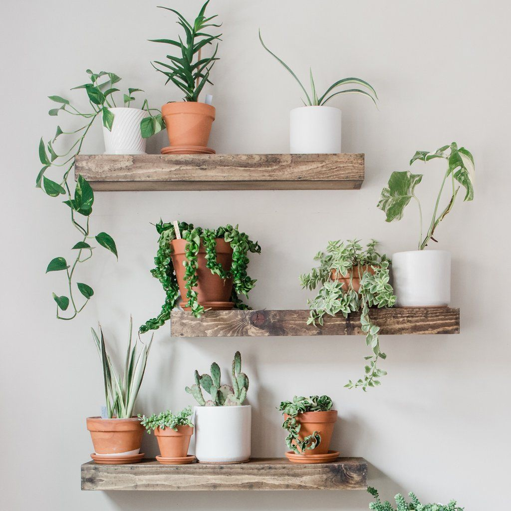 Download New DIY Shelves from urbanbilly.com