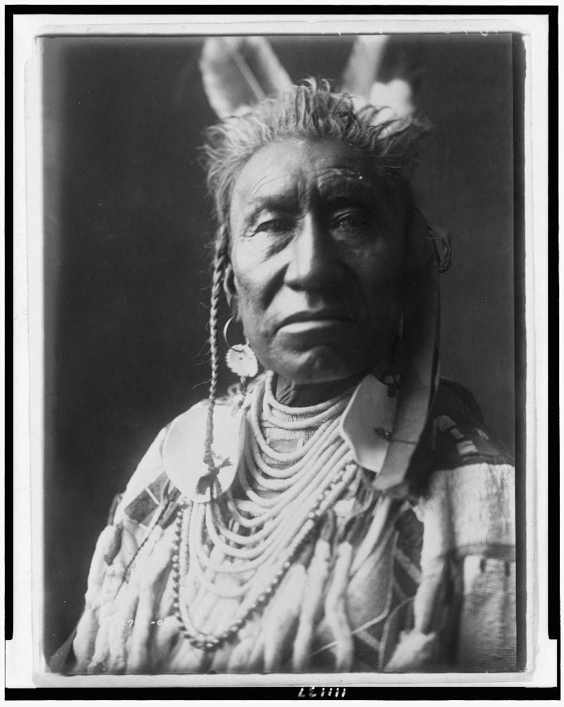 [Fish Shows, an Apsaroke Indian, head-and-shoulders portrait, facing front, pompadour, temple braids painted white, 2 eagle feathers, disk earring, shell beads with large disk ornaments, beaded buckskin shirt]   Library of Congress