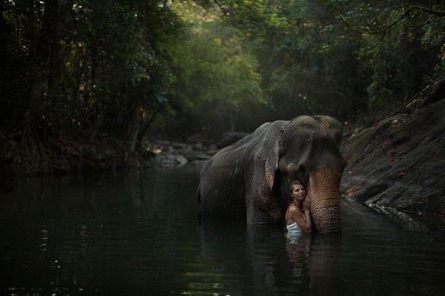 Fotógrafa russa registra fotos surpreendentes com animais reais e perigosos