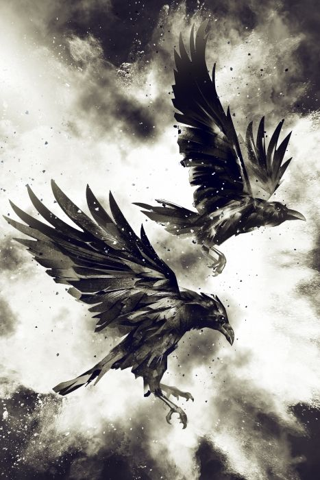 """Artwork """"Ravens"""" by Mateusz Slemp available on www.hovercover.art"""