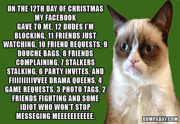 Funny Grumpy Cat Christmas Memes.Grumpy Cat 12 Days Of Christmas Grumpy Cat Funny