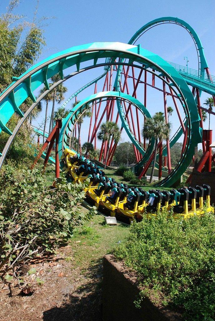 e52489fdf0ac3fdad0976bfc04ec1069 - Busch Gardens Tampa Bay Florida Attractions