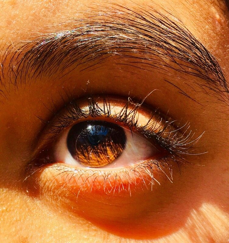 𝕴𝖈𝖊𝖑𝖆𝖓𝖉 𝕱𝖔𝖝 Pretty Eyes Eye Photography Beautiful Eyes