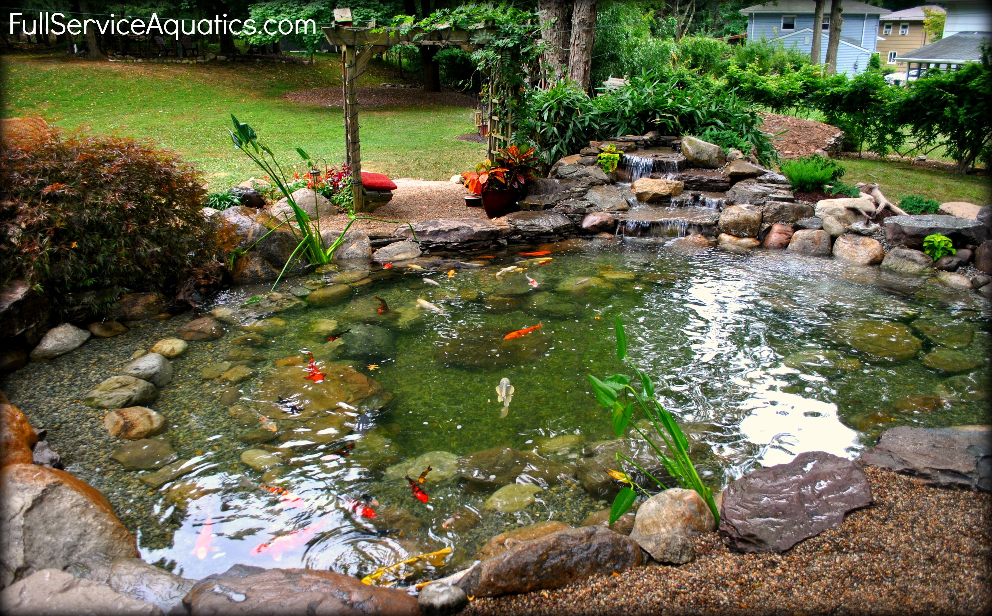 Beautiful koi pond with arbor seating area installed be for Landscaping around koi pond