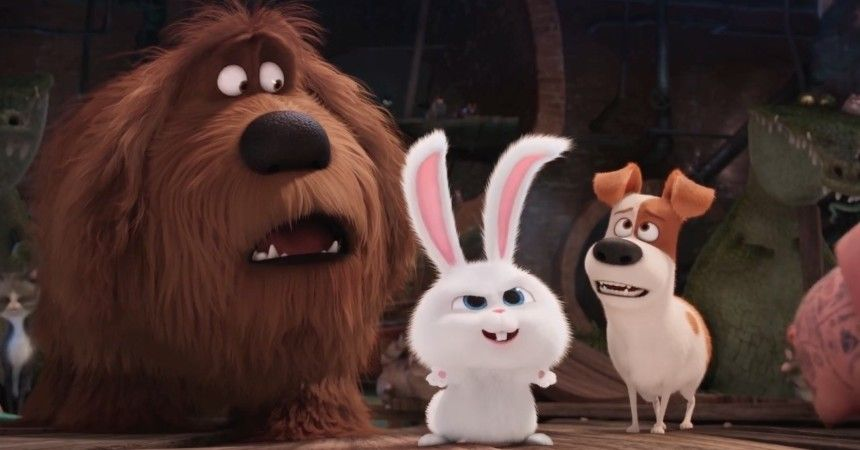 Facebook Watch The Secret Life Of Pets Leads In Another Slow Week Boxoffice Pro Secret Life Of Pets Cool Pets Pets Movie