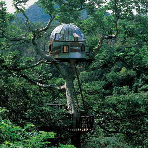 Epic tree-house ideas