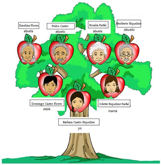 Arbol genealogico en ingles imagui for Nombres de arboles en ingles