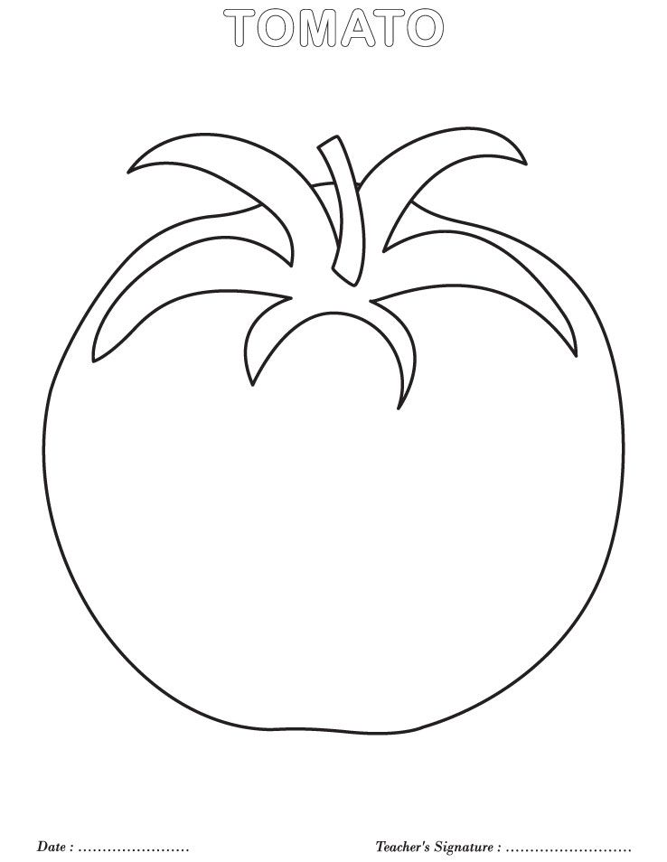 Tomato Coloring Page Vegetable Coloring Pages Fruit Coloring