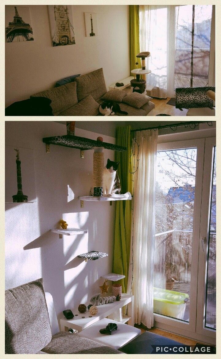 katzen kletterwand diy deko pinterest katzen kletterwand katzen und kletterwand. Black Bedroom Furniture Sets. Home Design Ideas