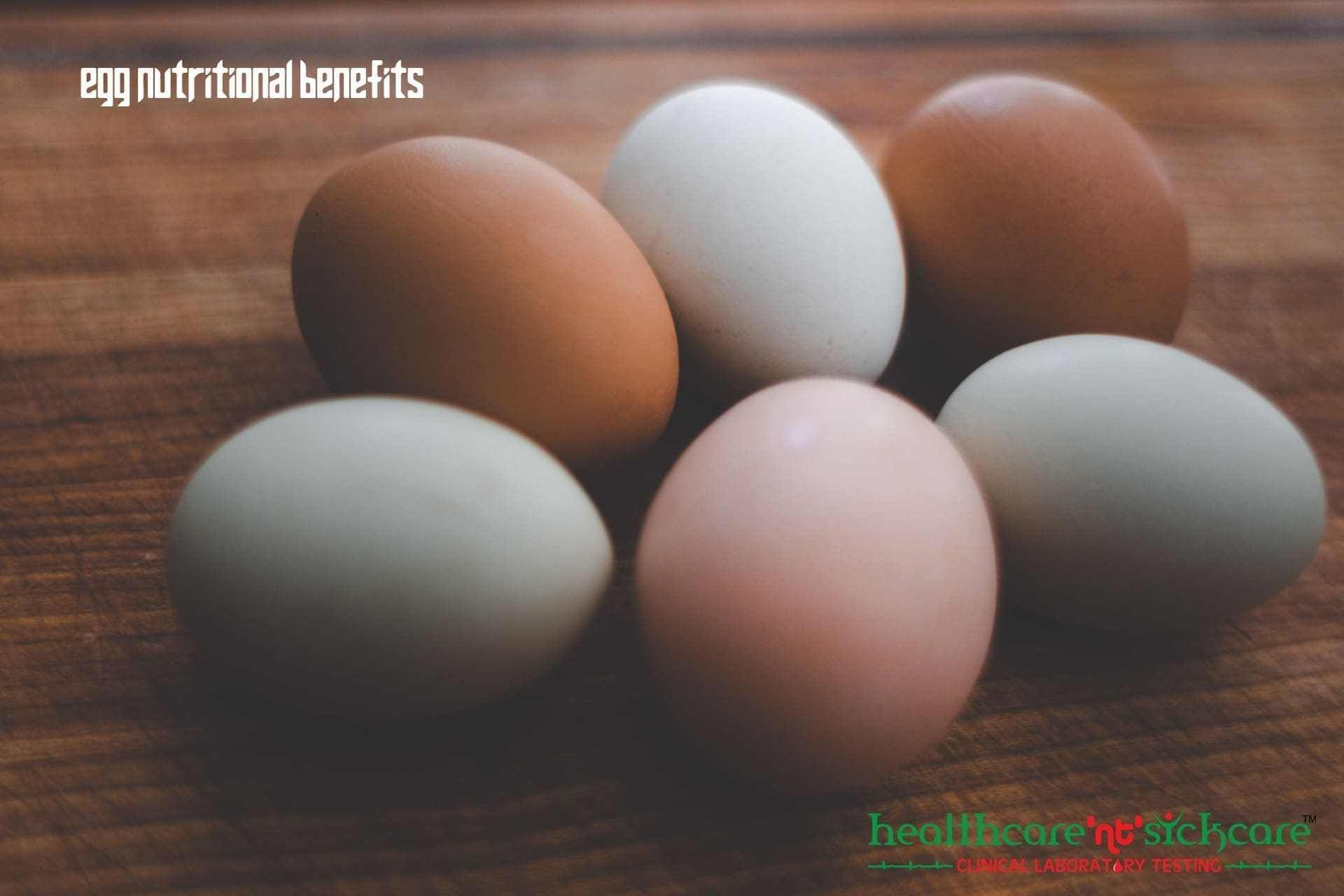 Egg Nutrition #boiledeggnutrition Egg Nutritional Benefits Eggs are spoken of as both very healthy and nutritious and very …   Egg Nutrition Read More » The post Egg Nutrition appeared first on healthcare nt sickcare. #eggnutritionfacts Egg Nutrition #boiledeggnutrition Egg Nutritional Benefits Eggs are spoken of as both very healthy and nutritious and very …   Egg Nutrition Read More » The post Egg Nutrition appeared first on healthcare nt sickcare. #eggnutritionfacts