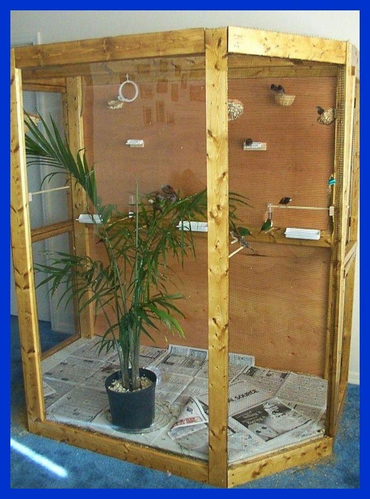 Pajarera Interior Para La Venta Indoor Vogel Voliere Zu Verkaufen Bird Aviary For Sale Aviary For Sale Diy Bird Cage