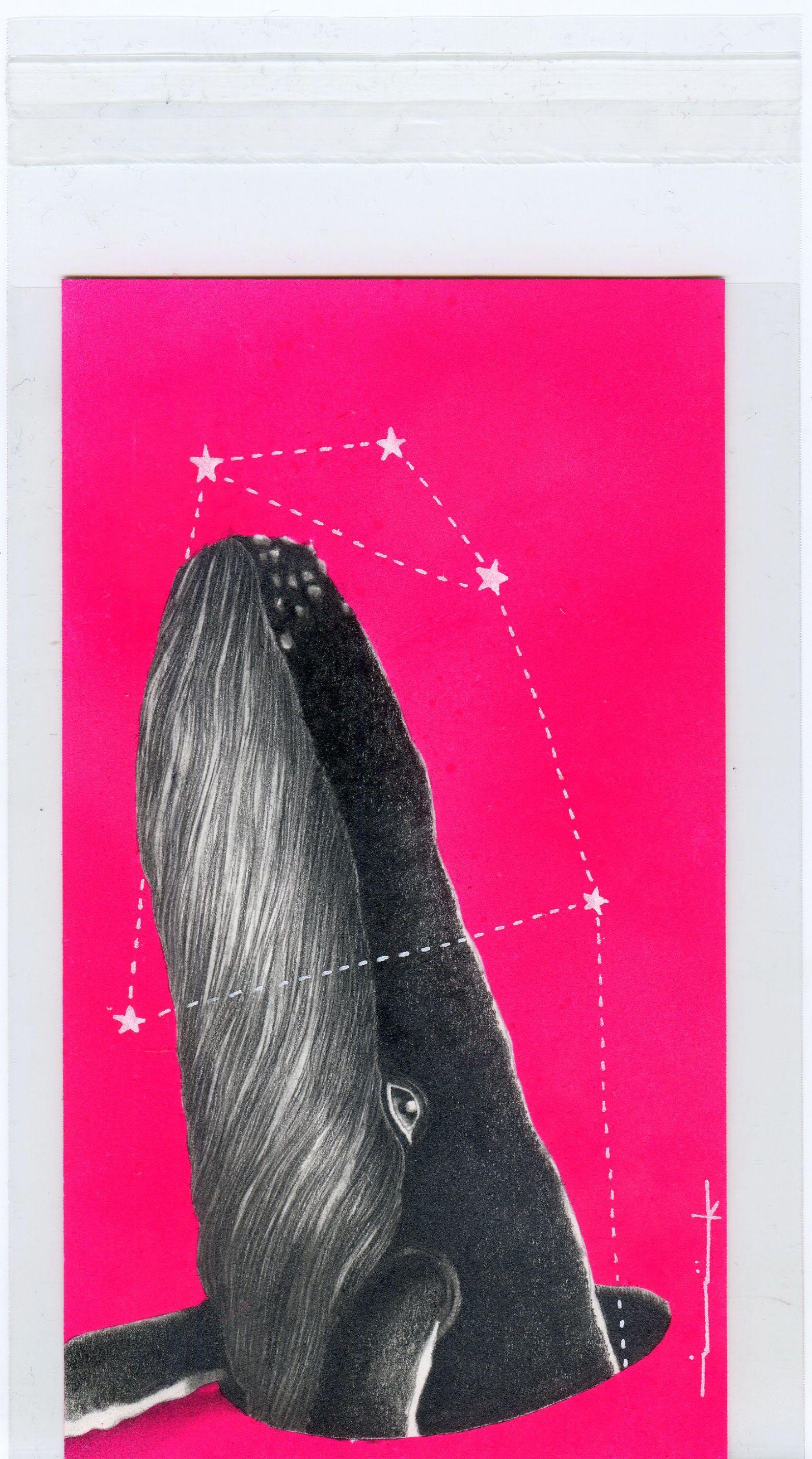 Whalescansaveus* #serie #miballenario #illustration #whales #isakaf #constellation #fate #destino