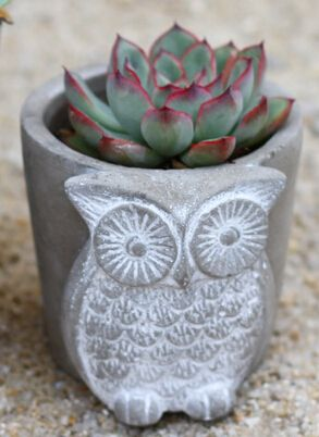 Home Decoration Flower Pots And Planters Tabletop Decorative Desktop Owl Pot Garden Decor