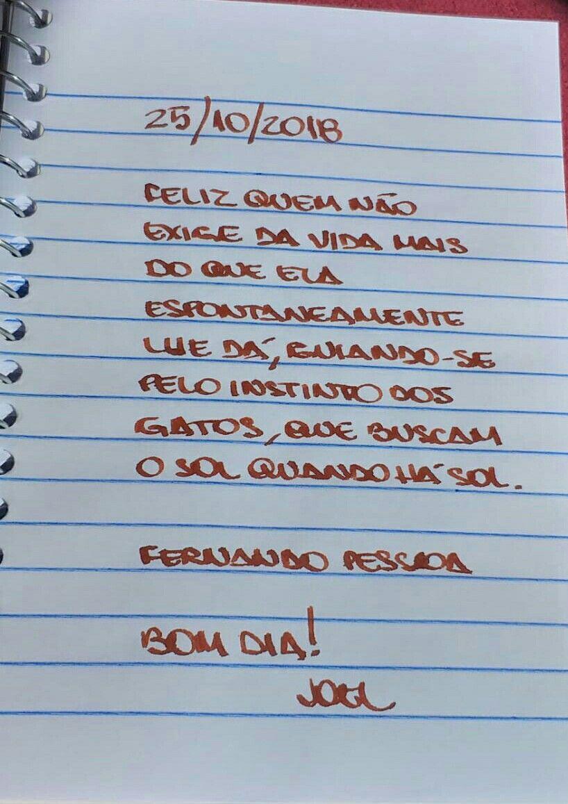 Pin De Vania Pianca Em Citacoes Do Joel 2018 Citacoes E Gatos