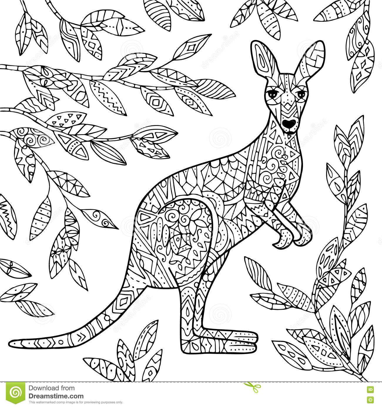 Pin By Barbara On Coloring Kangaroo Ostrich Kangaroo Illustration Kangaroo Art Kangaroo Drawing
