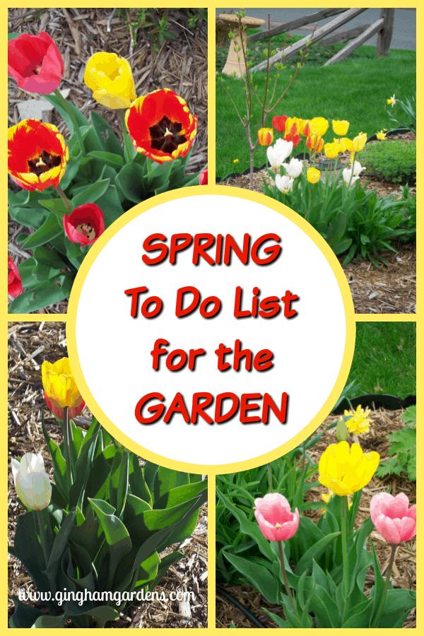 Practical Tips For Spring Garden Clean Up   Gingham Gardens