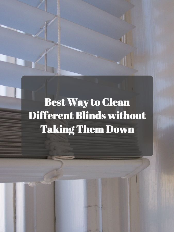 Best Way To Clean Different Blinds Without Taking Them Down