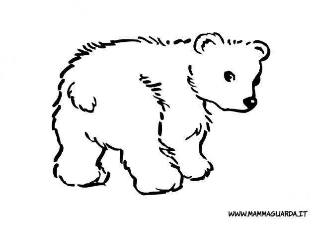 Phoca Thumb L Orso Da Colorare 8 Jpg 640 452 Silhouette Di Animali Animali Cuccioli Della Fattoria