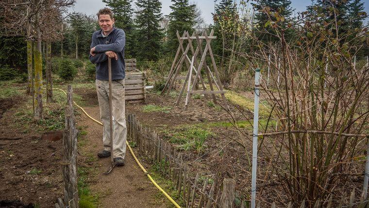 Peter Rasch Steht In Seinem Garten Garten Garten Anlegen Ziegelsteine