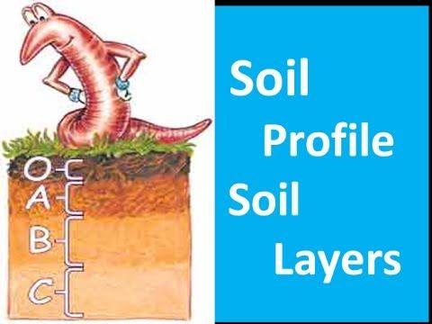 Soil profile soil layers video for kids youtube for Different types of soil for kids
