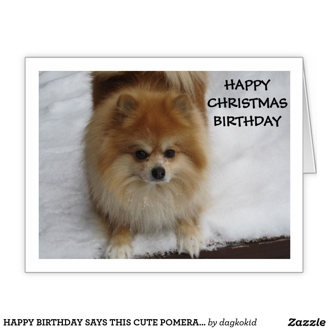Happy Birthday Says This Cute Pomeranian Crazy For Christmas