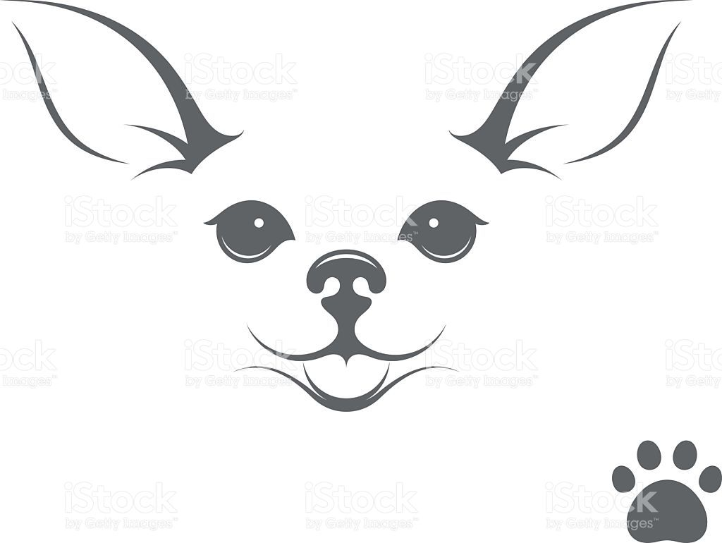 Vector Illustration Chihuahua Tattoo Chihuahua Drawing