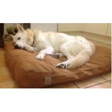 carhartt dog bed (100550). merlin the siberian husky finds his