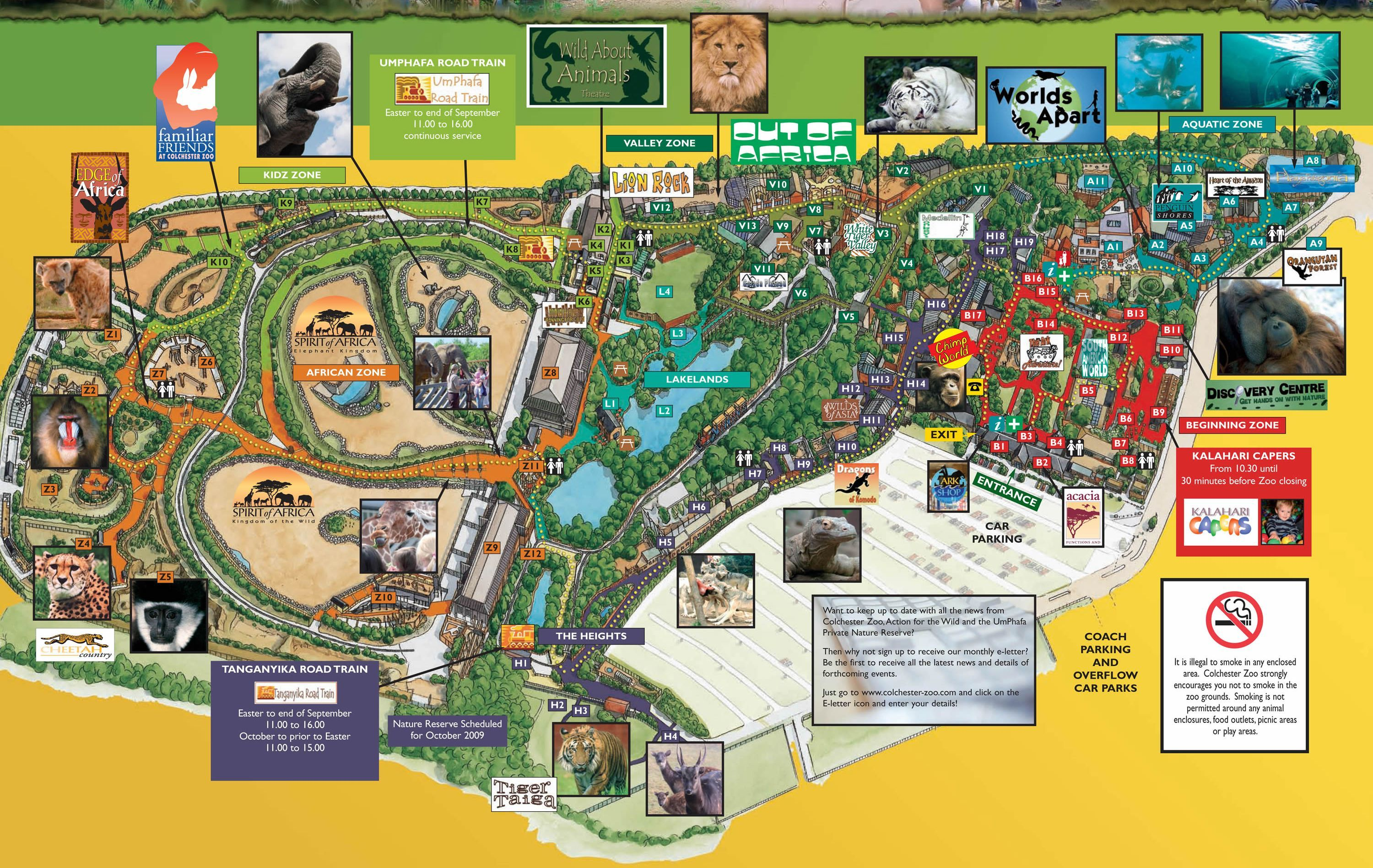 Colechester Zoo 3d Map From Fitzpatrick Woolmer Map Illustrated
