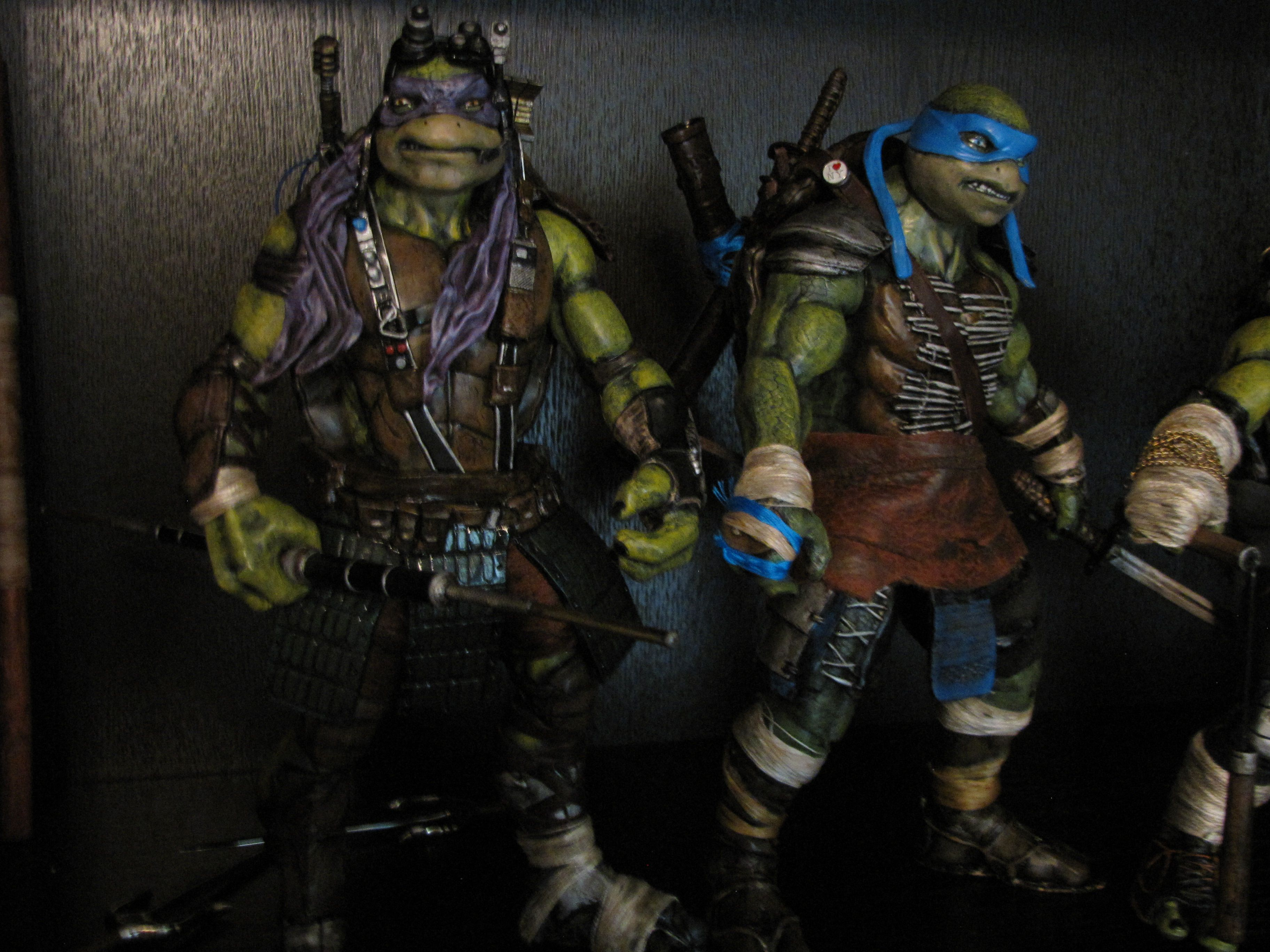 2014 TMNT Custom Donatello & Leonardo