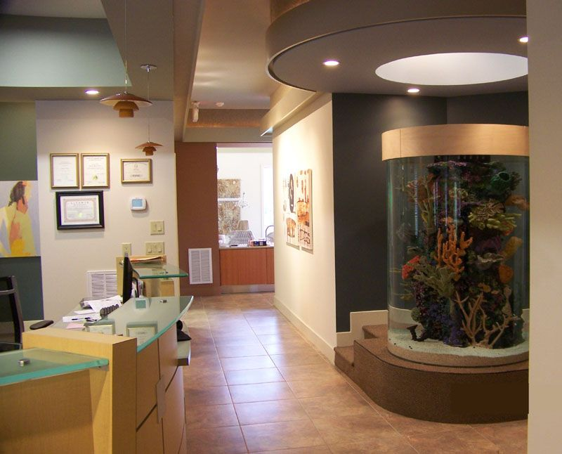 orthodontic office fish tank Google Search Office Design