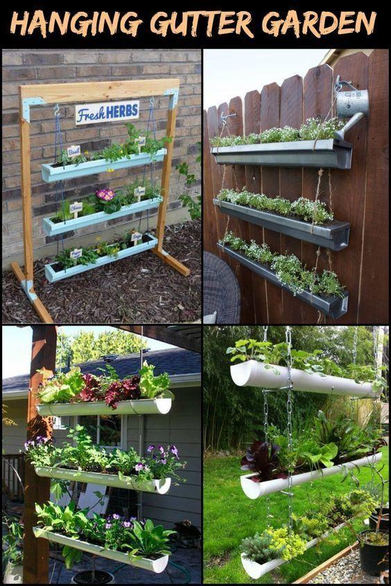 Photo of Dieser DIY hängende Gossengarten spart Ihnen viel Gartenraum!