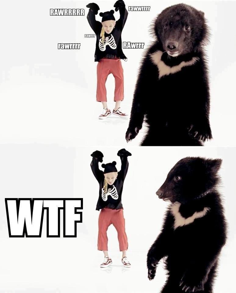 GD gots more swag than da bear