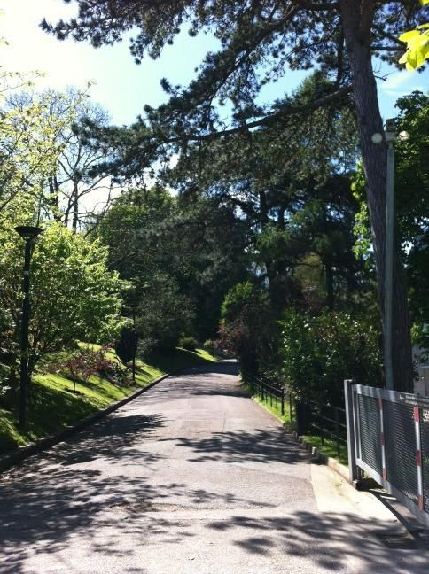 Cork Ireland Walking Into College Today In Ucc This Is The View