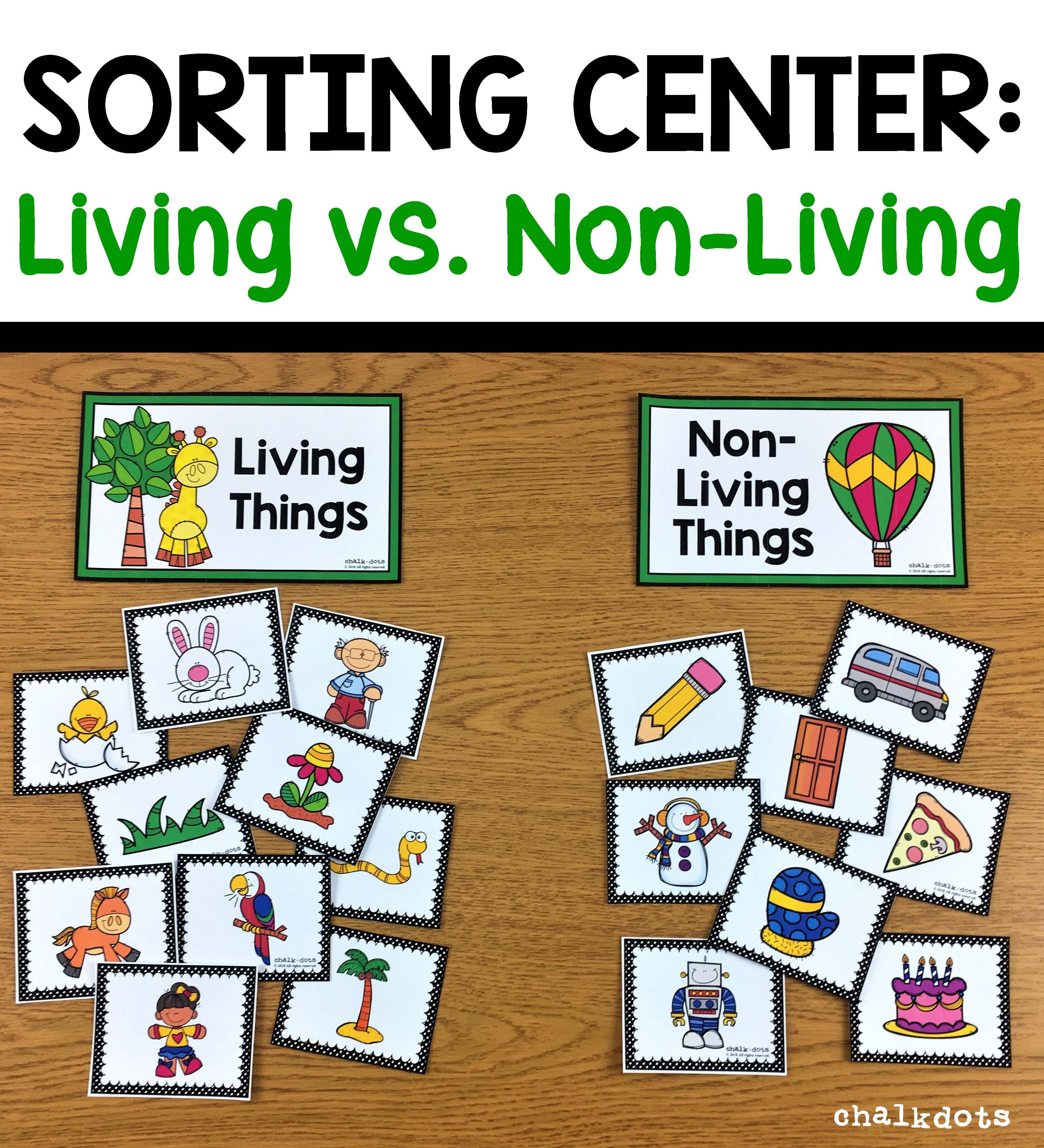 Living Vs Non Living Sorting With Images