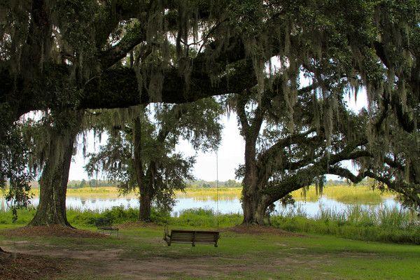 Mansfield Plantation....next Charleston adventure!