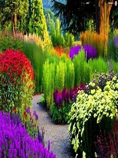 Colorful Garden Mobile Wallpaper Beautiful Gardens Dream Garden Gorgeous Gardens