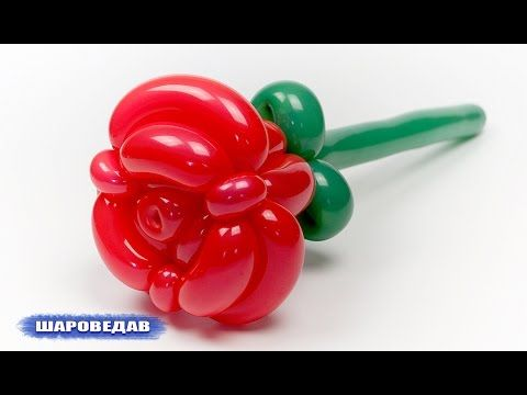 Como Hacer Rosas Con Globos Largos Globoflexia Rosa Como Hacer - Como-hacer-flores-de-globos
